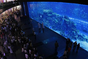 Tickets Dubai Aquarium & Underwater Zoo